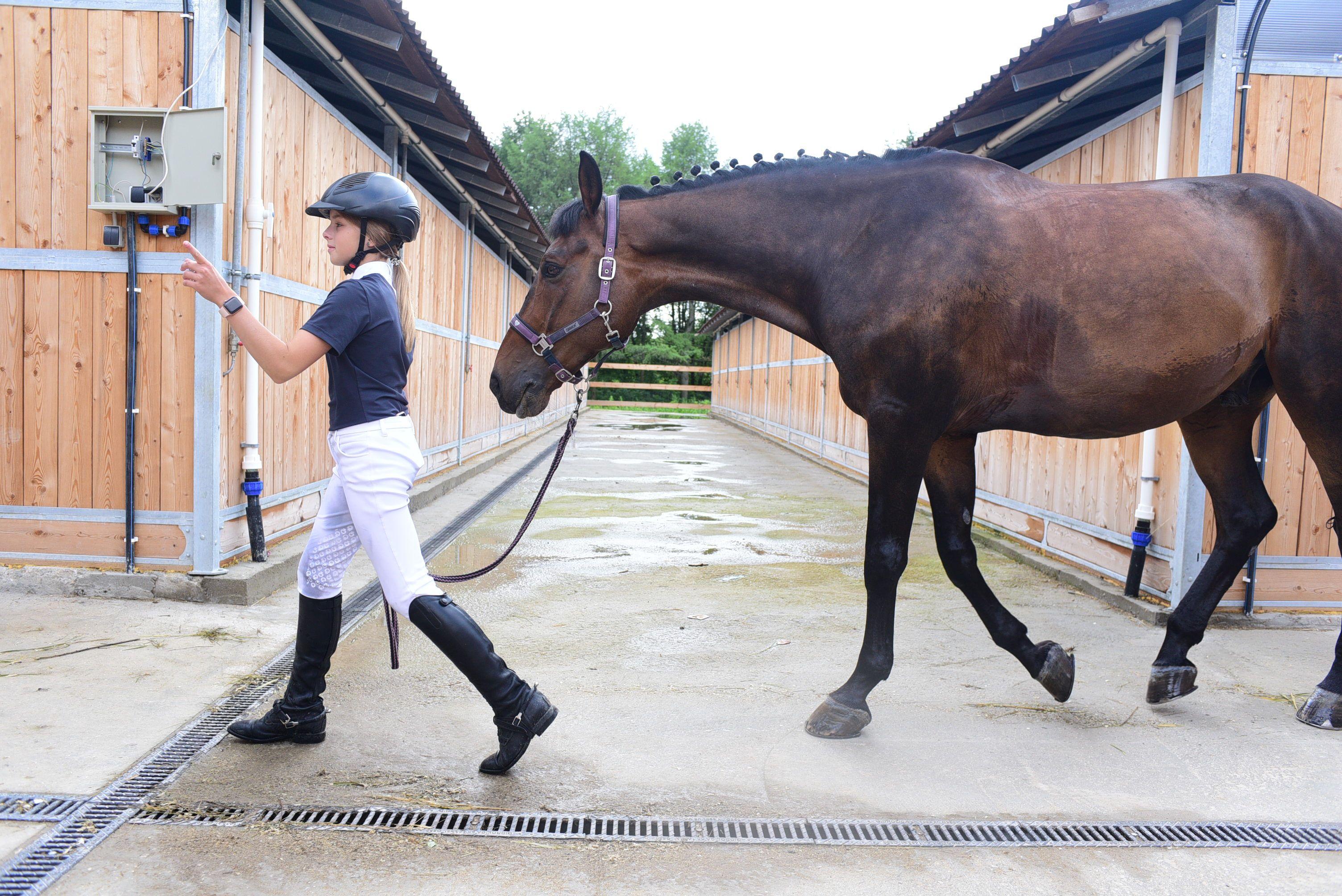 Дружба с лошадью: в «Битце» стартовали соревнования по конкуру