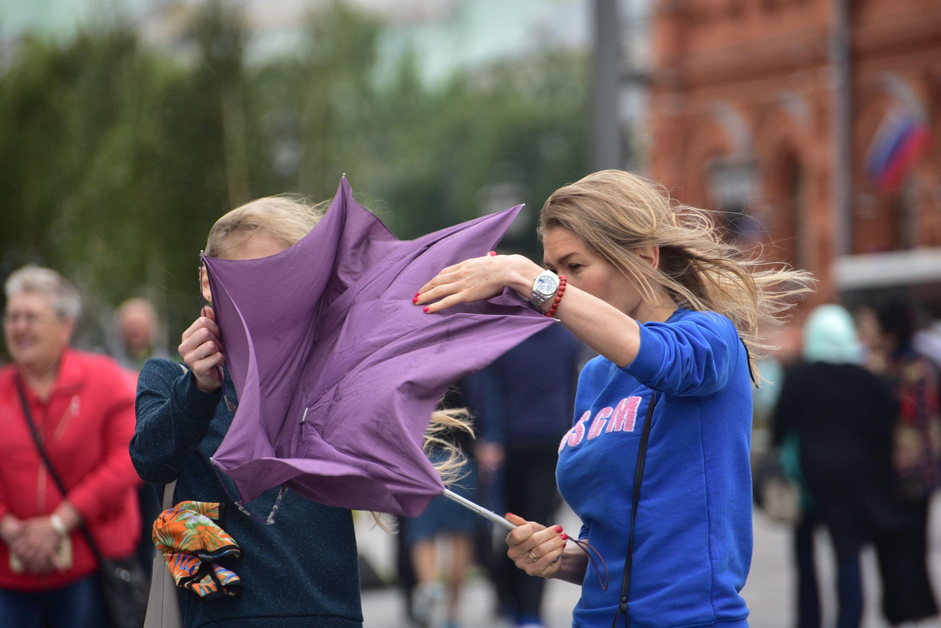 Московские синоптики пообещали ветер и дожди в четверг