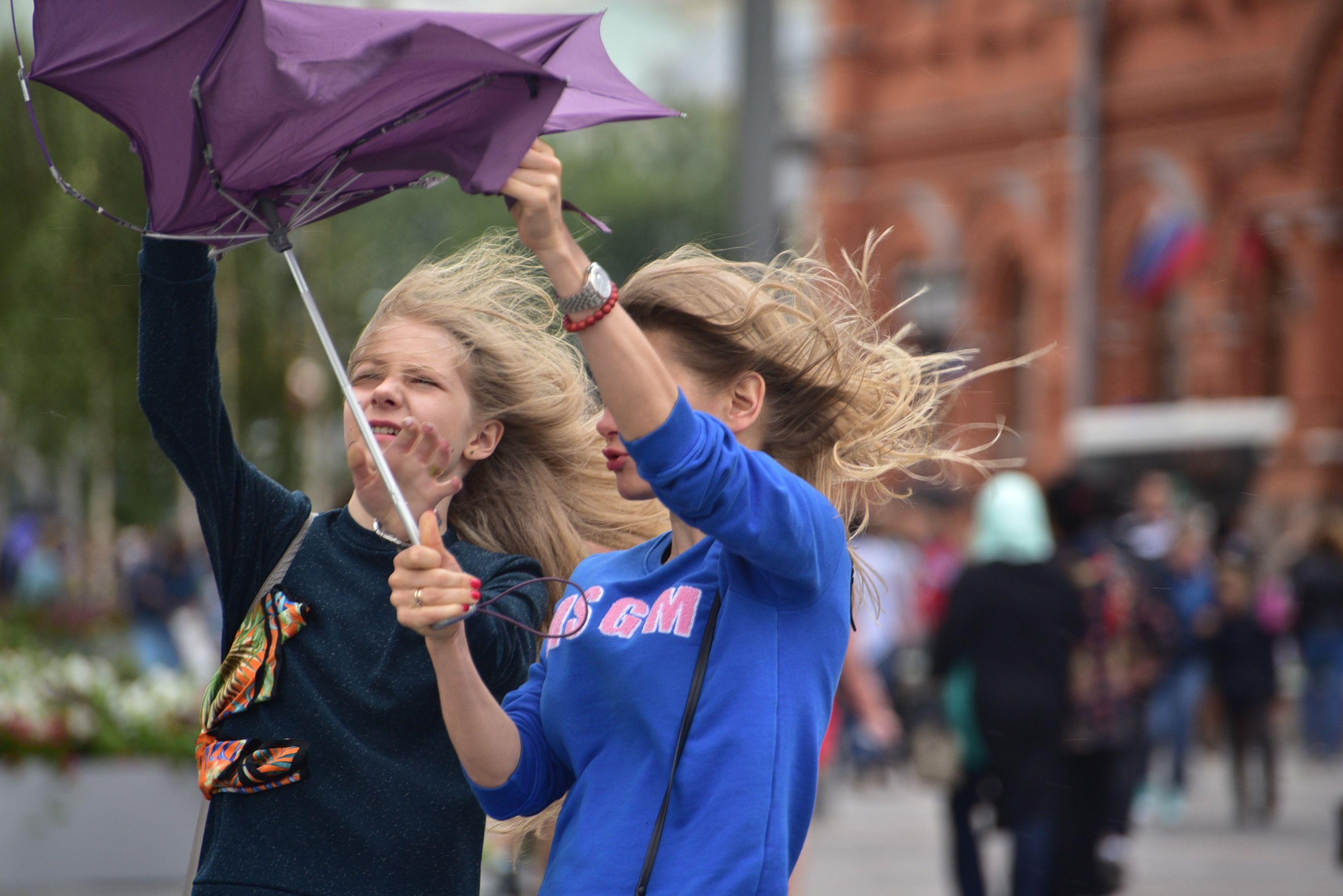 Москвичей ждет сильный ветер во вторник