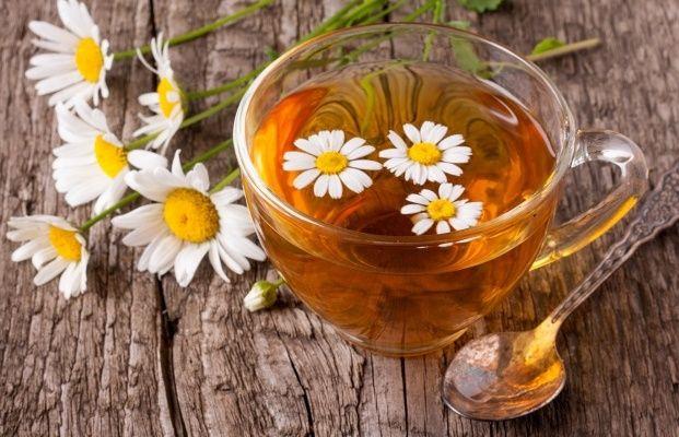 Жителей юга пригласили на «Цветочное чаепитие»