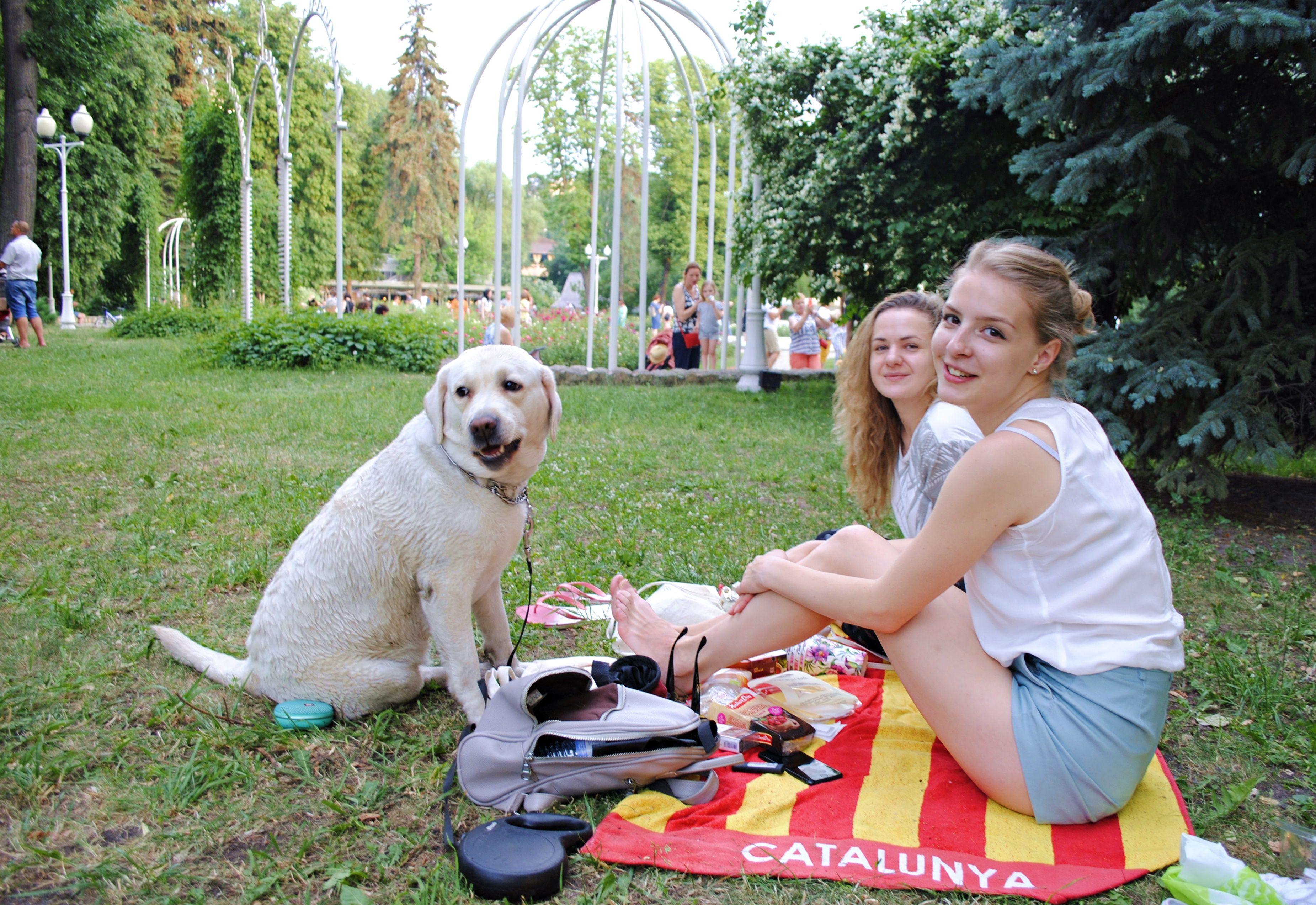 Москвичам пообещали летнее тепло на неделе