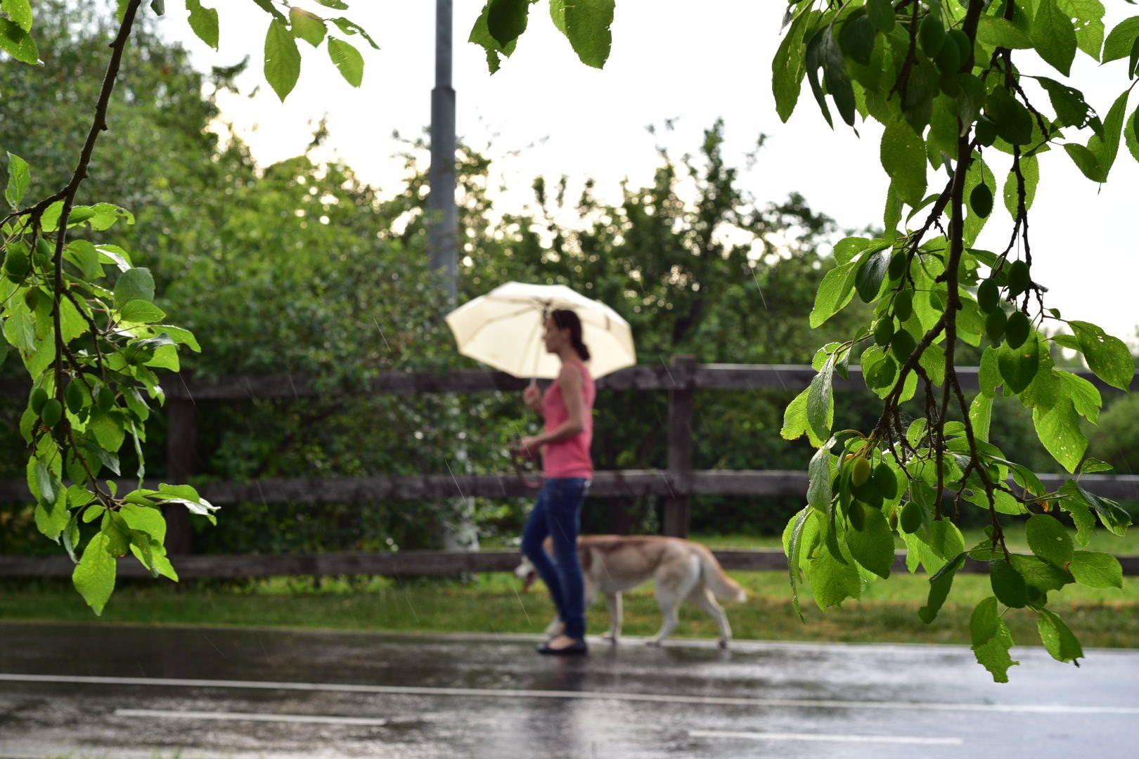 Москвичей ждет теплая и дождливая погода в воскресенье