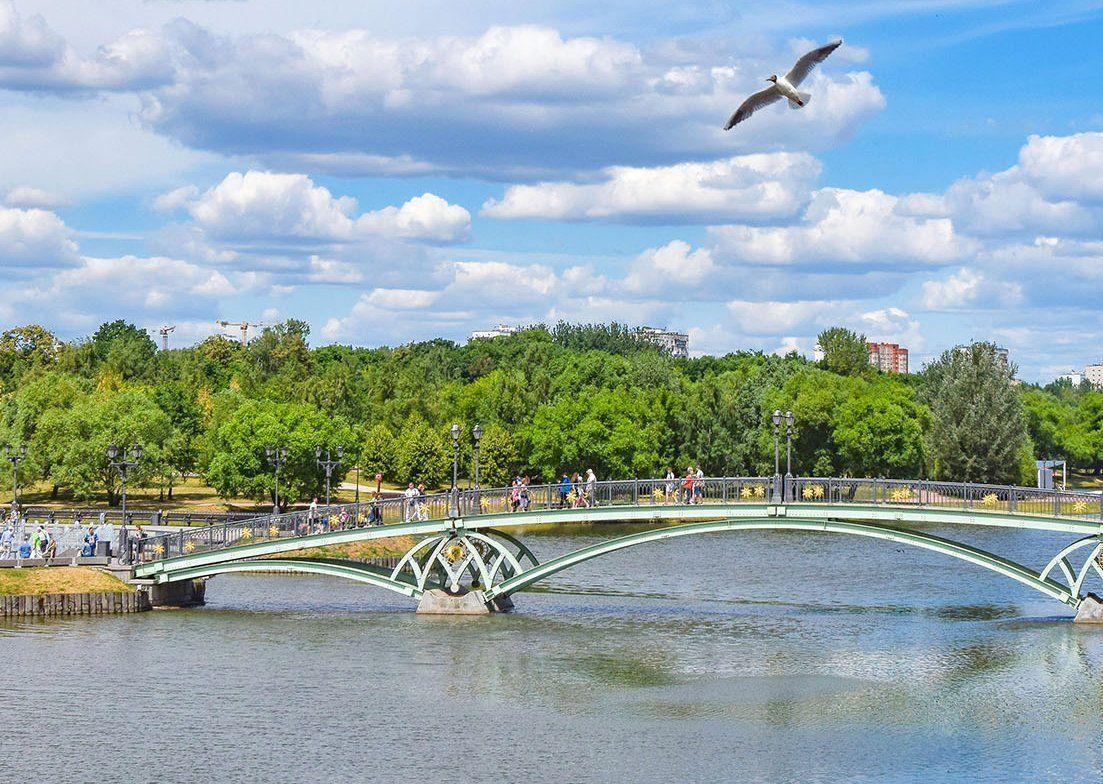 Большую историческую плотину на Царицынских прудах отреставрируют