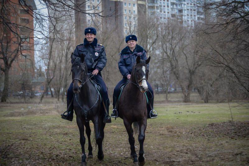 Полицейскими района Чертаново Северное задержан сотрудник организации, подозреваемый в присвоении денежных средств. Фото: архив, «Вечерняя Москва»