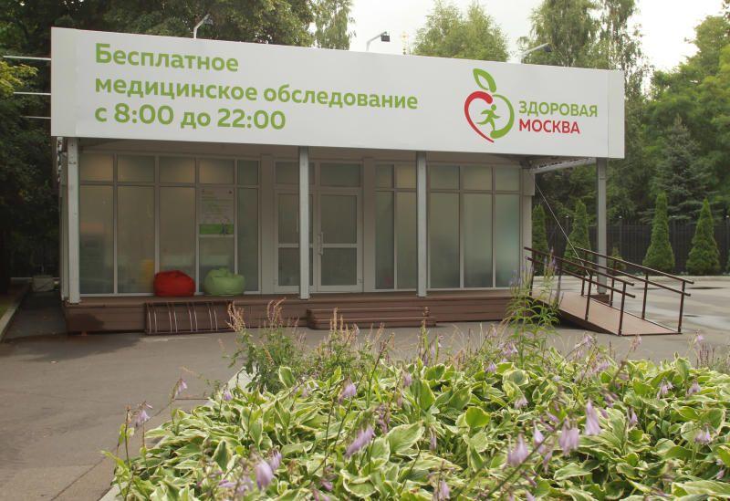 Занятия в рамках проекта «Здоровая Москва» посетили более 150 тысяч раз. Фото: Наталия Нечаева, «Вечерняя Москва»