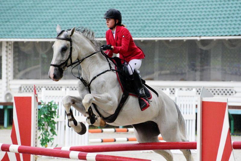 Юные спортсмены поборются за «Кубок президента Федерации конного спорта Москвы» в «Битце»