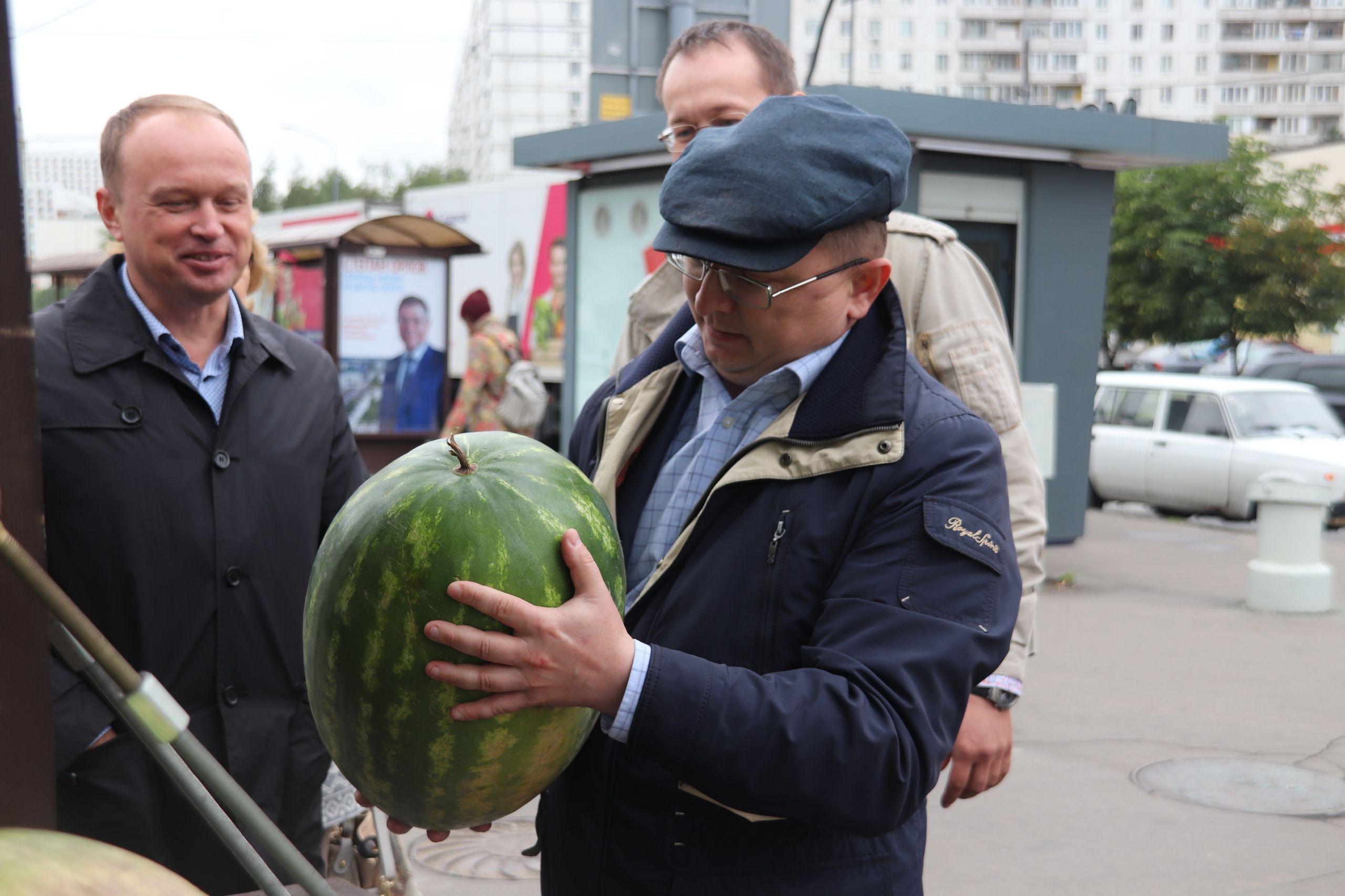 Бахчевые развалы в Орехове-Борисове Южном проверили