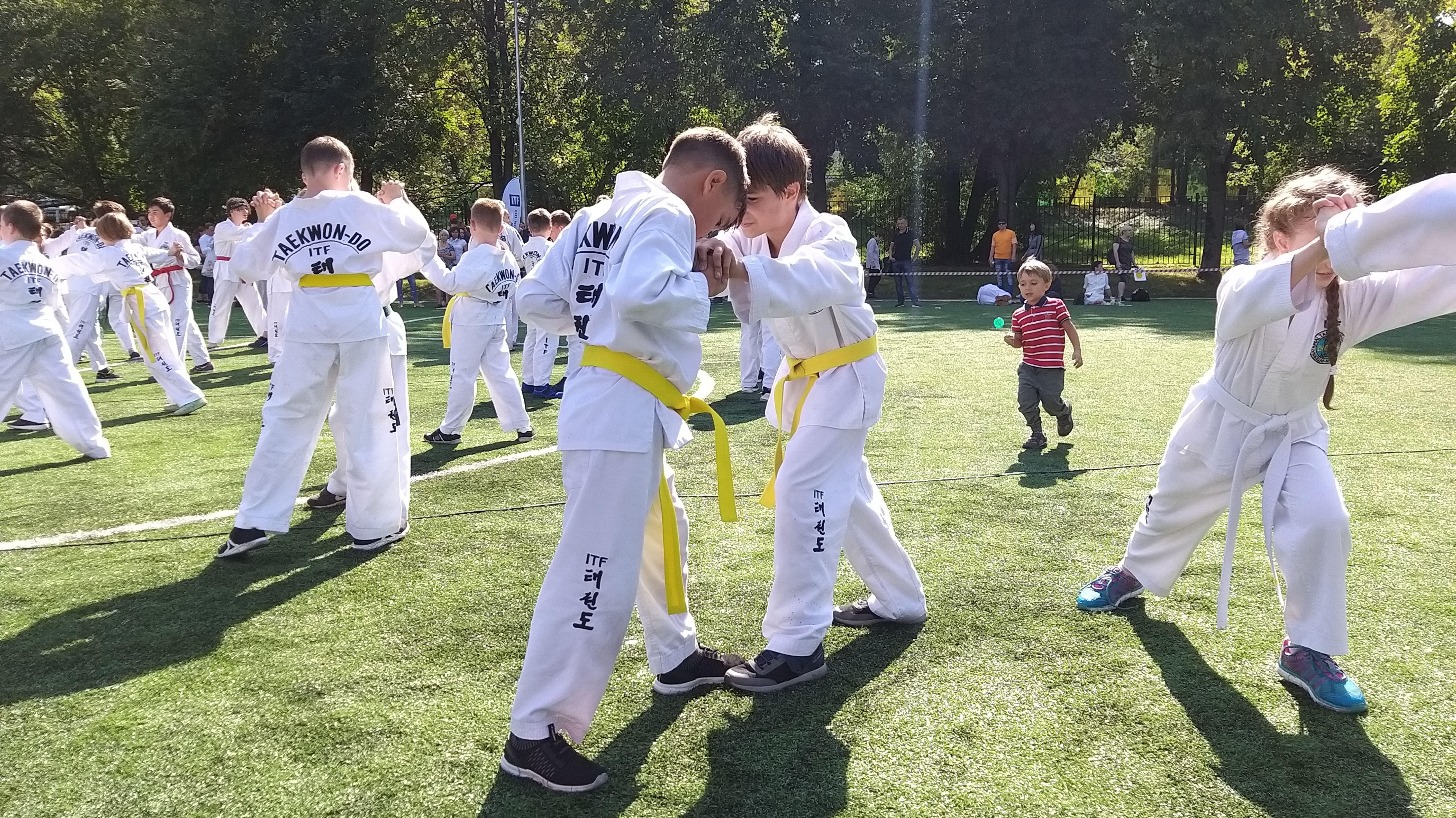 Мастера боевых искусств: Московская школа таэквон-до отметила 30-летний юбилей. Фото: Виктория Чуранова