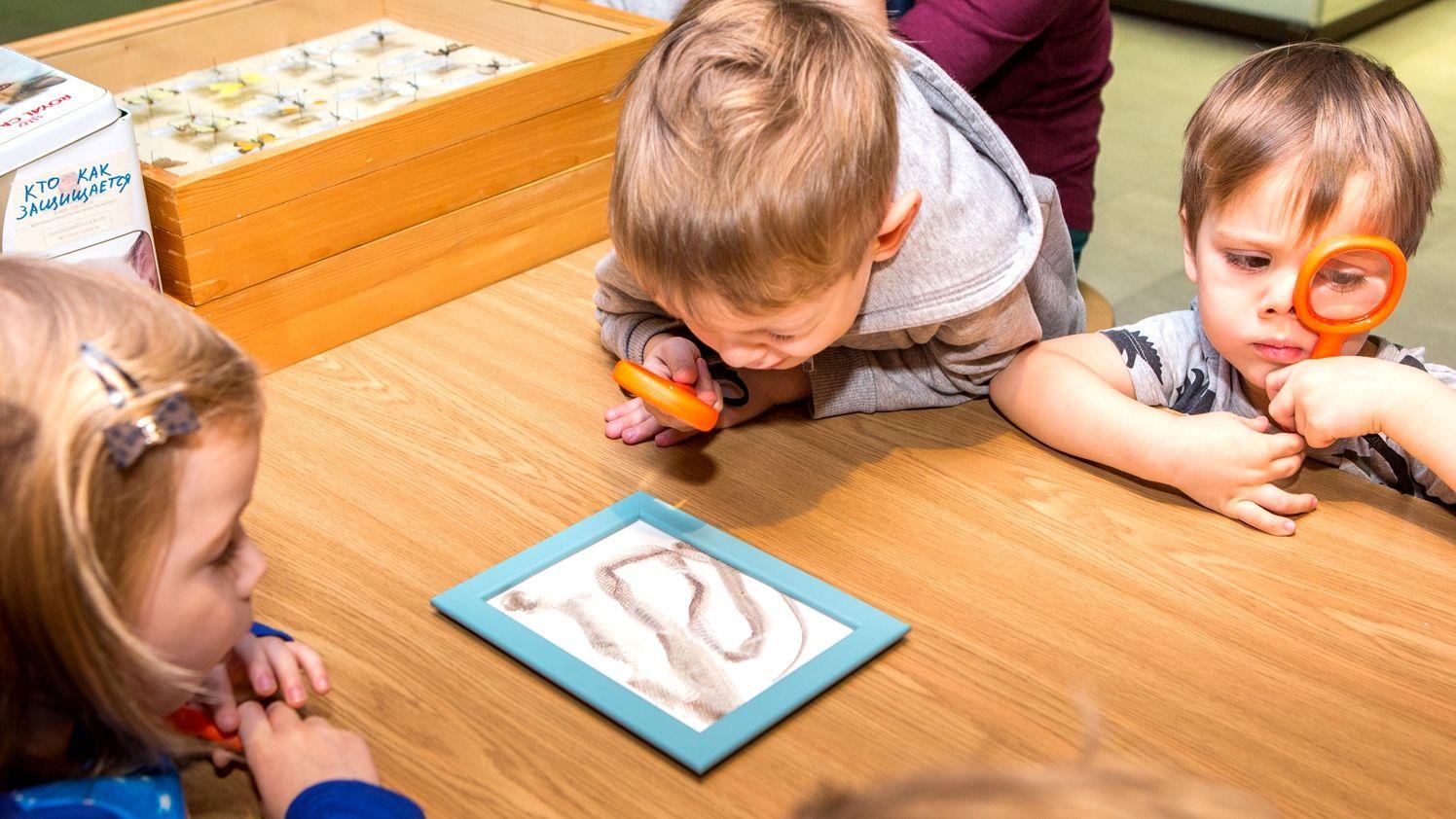 Праздник для любознательных детей проведут в Дарвиновском музее