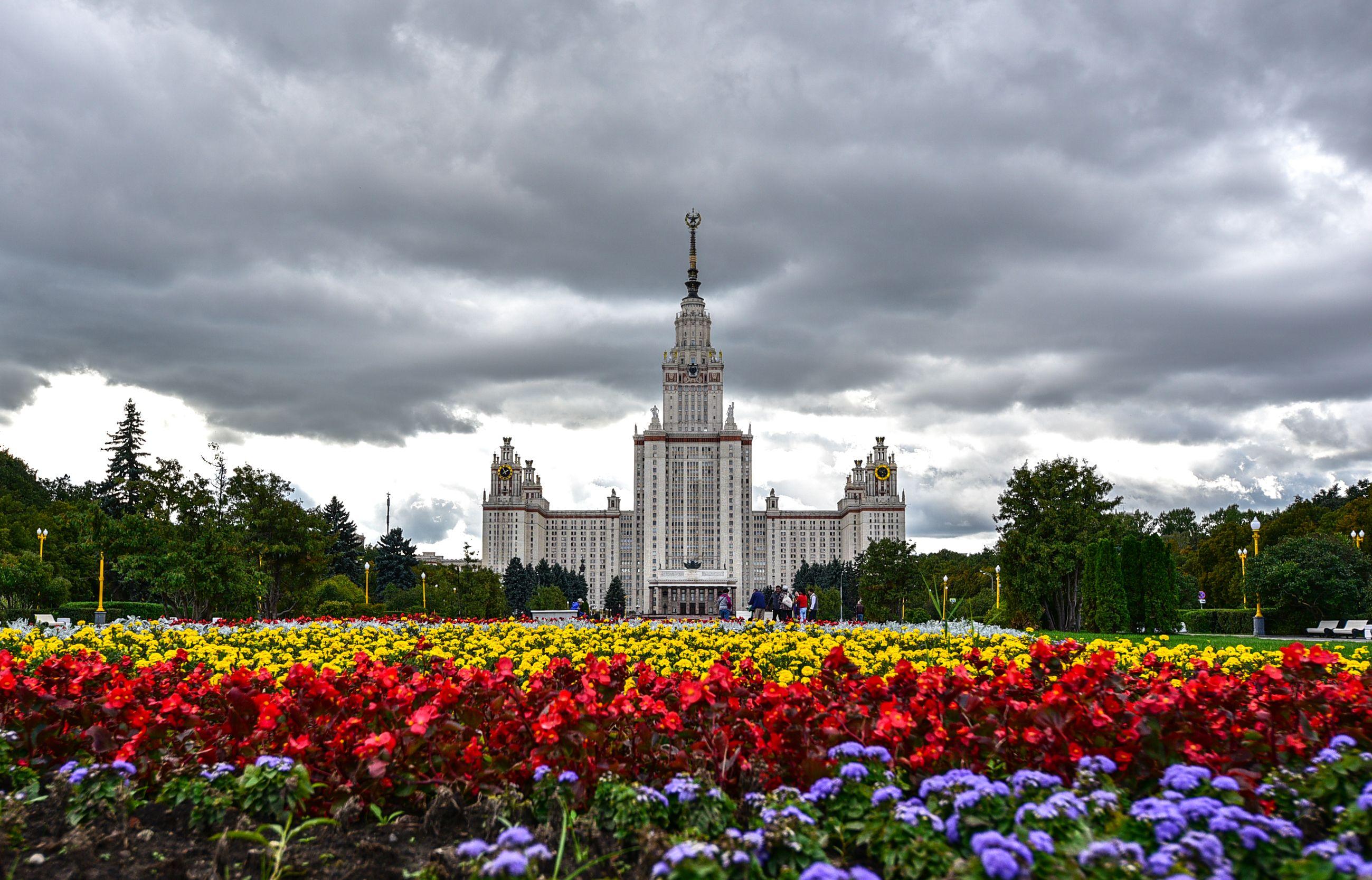 Почти 500 тысяч многолетников высадили в Москве за год