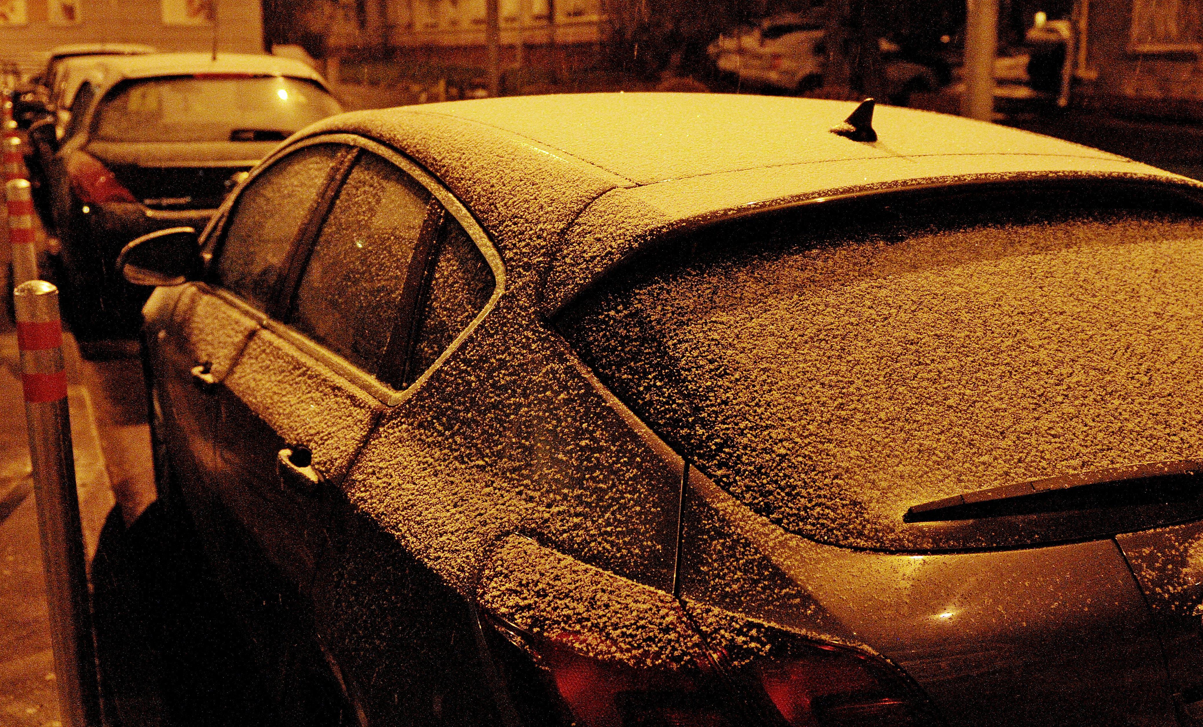 Заморозки напугали синоптиков до «оранжевого» уровня опасности в Москве