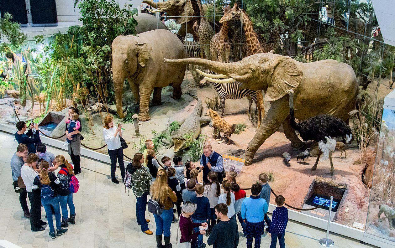 Научную карьеру французского зоолога обсудят в Государственном Дарвиновском музее