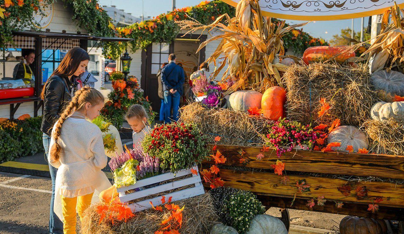 Ореховый бульвар станет одной из площадок фестиваля «Золотая осень»