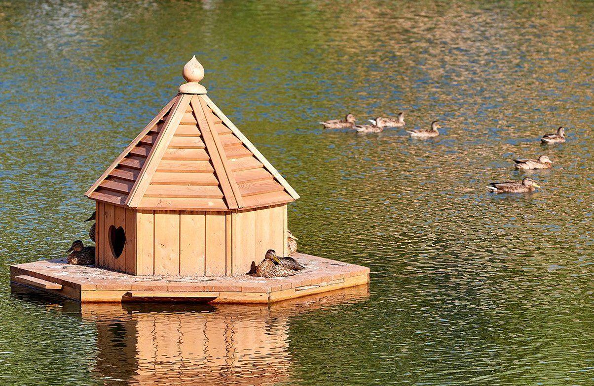 Домики для водоплавающих птиц появятся на Бирюлевских прудах