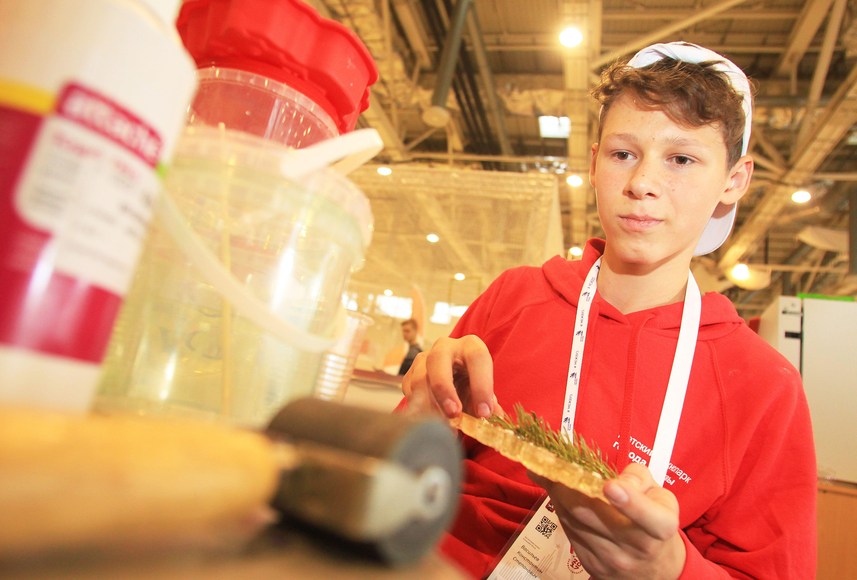 Более 1,5 тысячи детей прошли в полуфинал чемпионата KidSkills