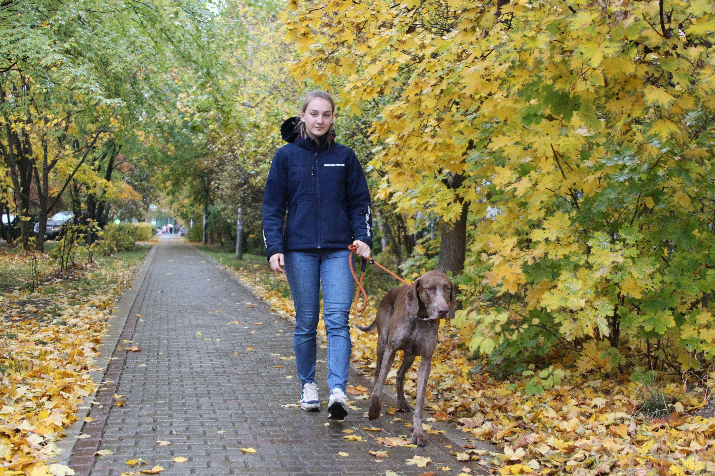 Москвичам пообещали теплую погоду в воскресенье