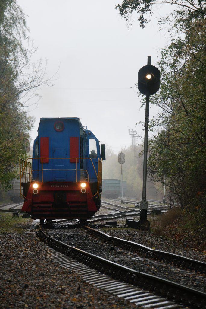 Фото: Анатолий Цымбалюк