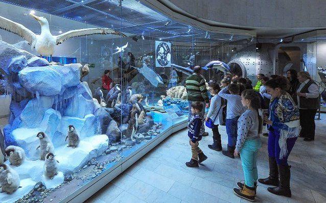Школьников юга пригласили провести осенние каникулы в Дарвиновском музее