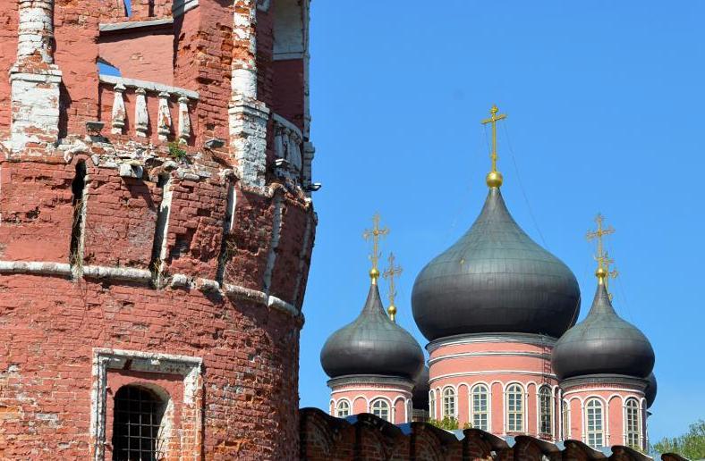 Горожан пригласили на встречу в Молодежном клубе при Донском монастыре
