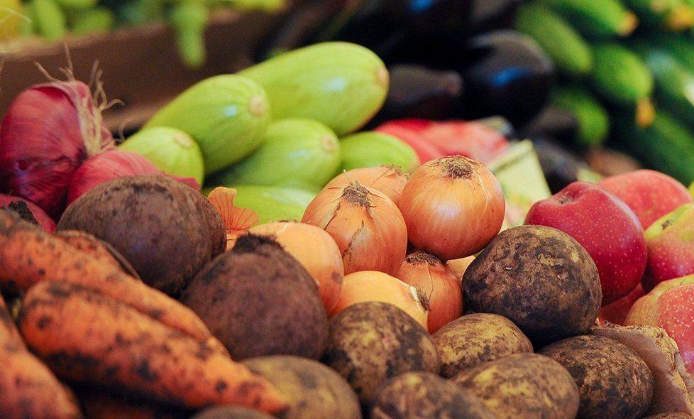 Похищение луковиц: детективную историю покажут в «Загорье»