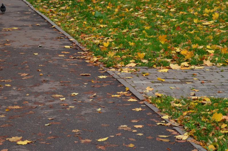 Асфальтовое покрытие заменят на участке проспекта Андропова