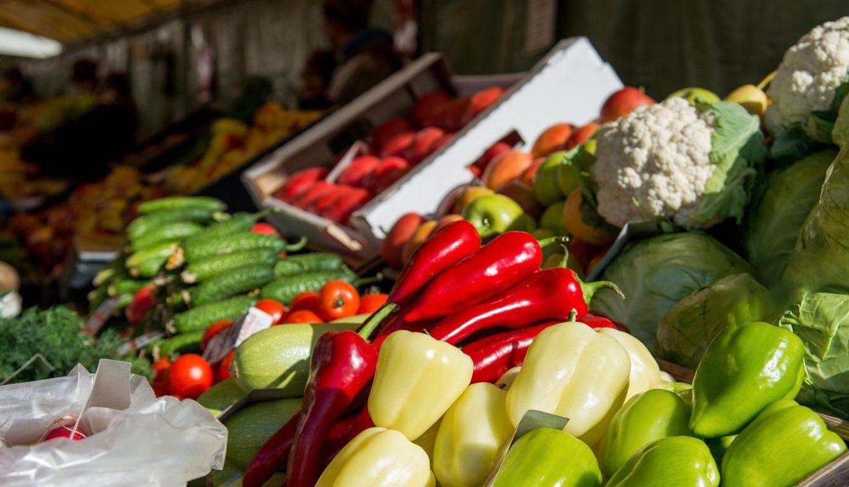Новую продовольственную ярмарку открыли в Орехове-Борисове Северном