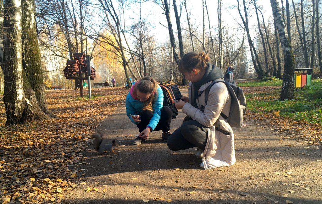 Народный корреспондент запечатлела знакомство белки с гостями парка. Фото: Екатерина Набережнова
