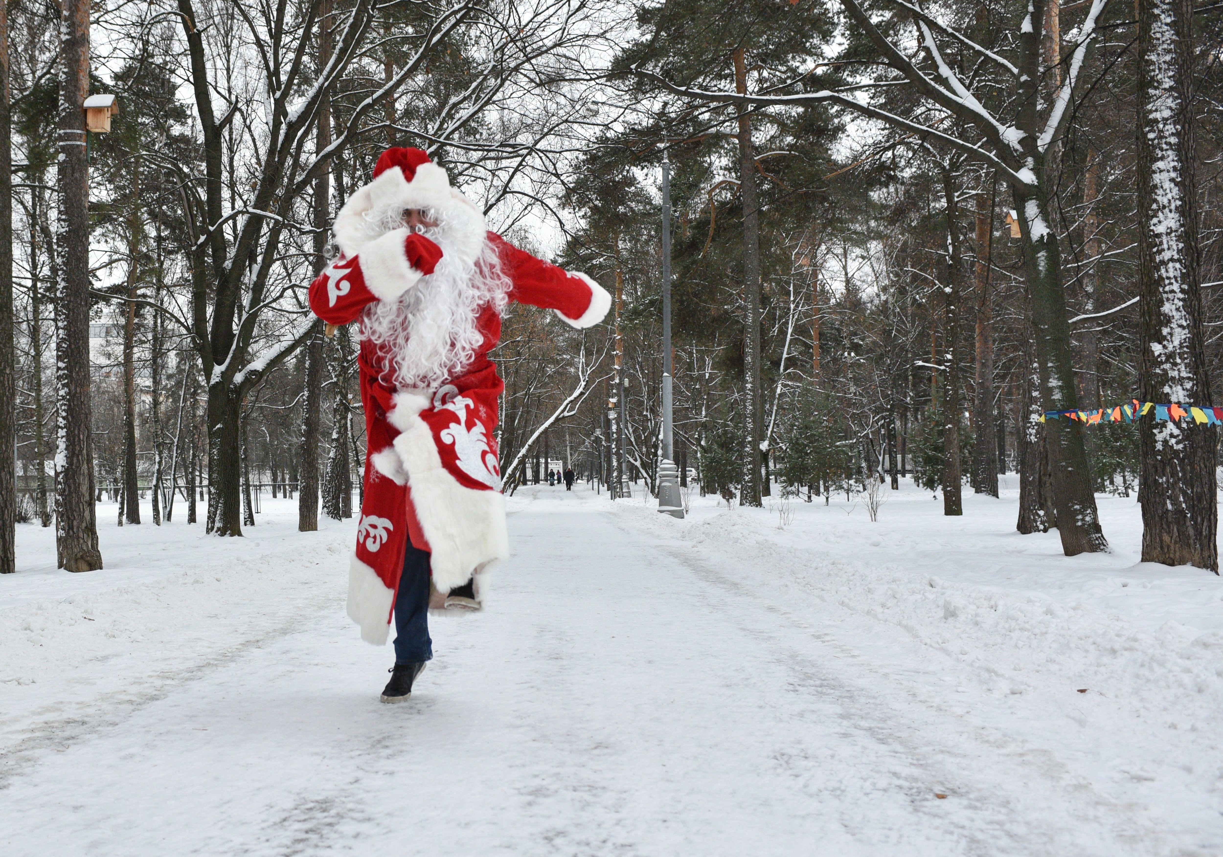 Снег в Москве ляжет 1 декабря