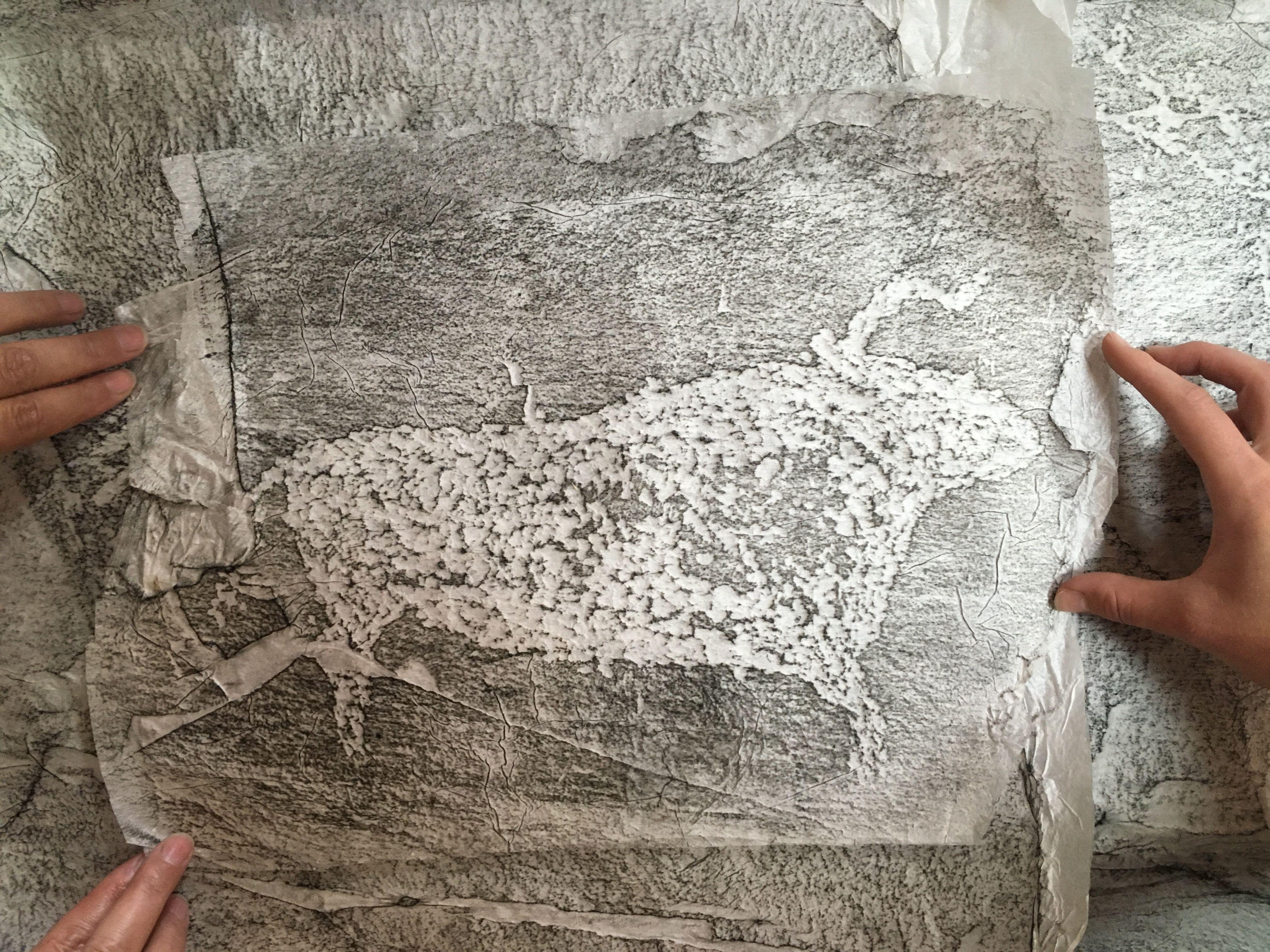 Летопись о выставке «Тайны древностей и наскальной живописи Сибири и Дальнего Востока»