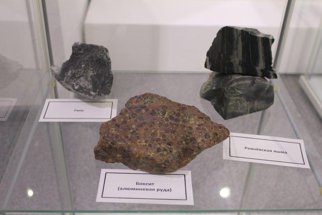 На выставке представлены и камни, которые послужили полотном для рисунков древних людей. Фото: Антон Онищенко