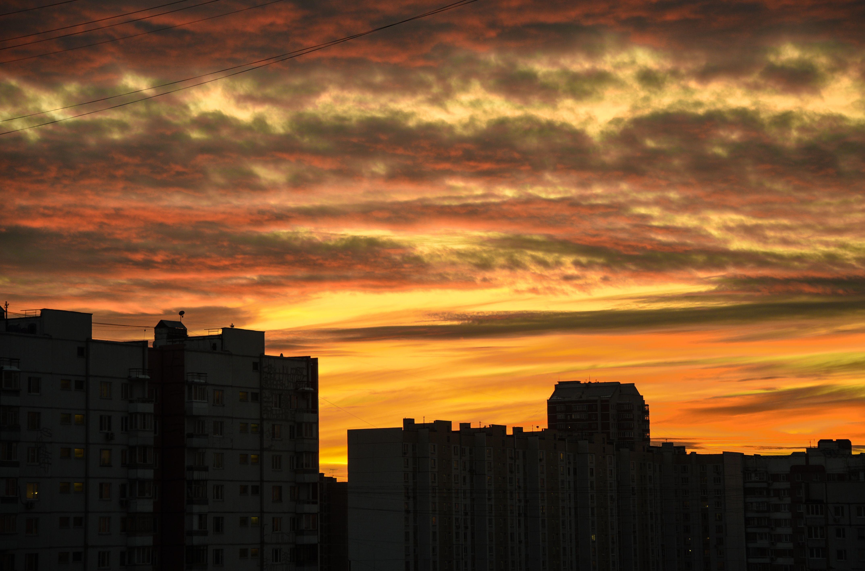 Плюсовые температуры ждут Москву во вторник