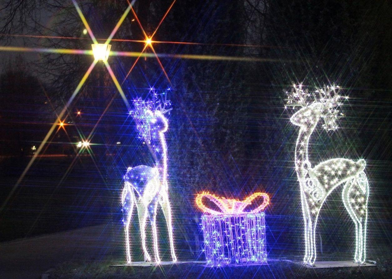 Сотрудники «Коломенского» рассказали о работе музея-заповедника в праздники