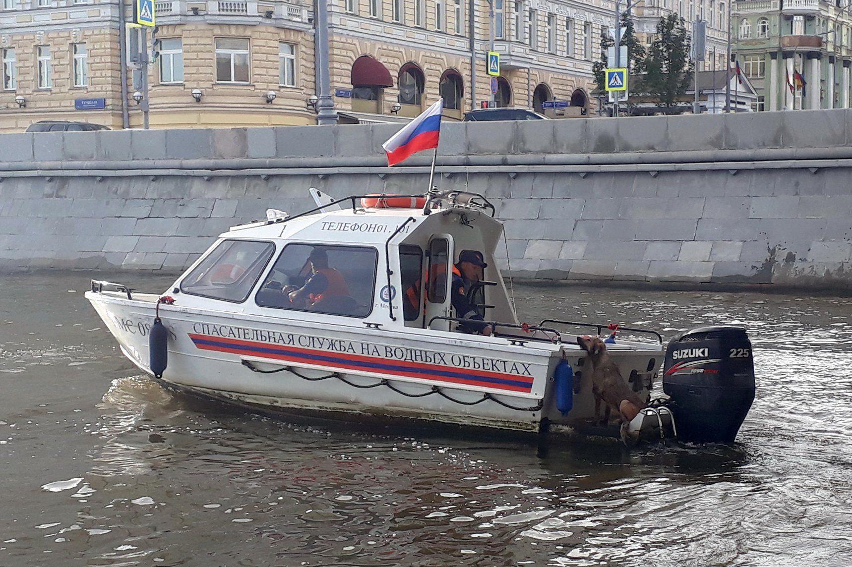 Московские спасатели выезжали более трехсот раз на помощь животным