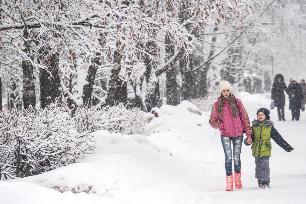 Горожане выбрали зимние развлечения в парке «Садовники»
