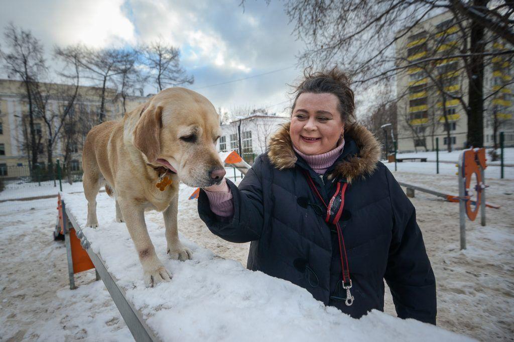 Площадка для выгула собак появится на Кировоградской улице. Фото: архив, «Вечерняя Москва»