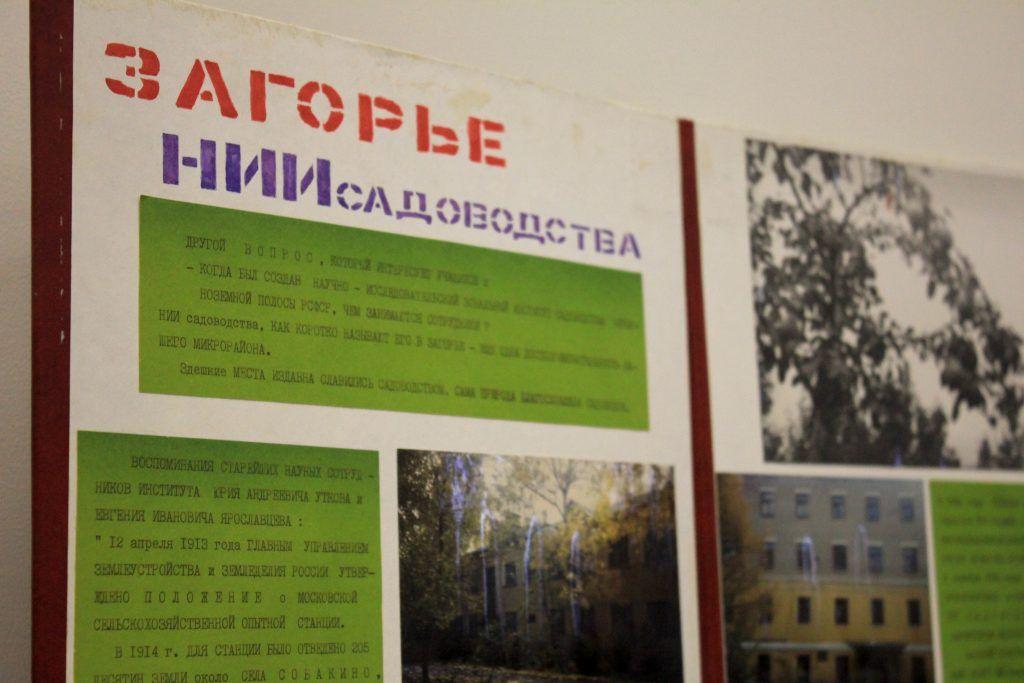 Единственный в России институт садоводства расположен в Загорье. Фото: Мария Канина