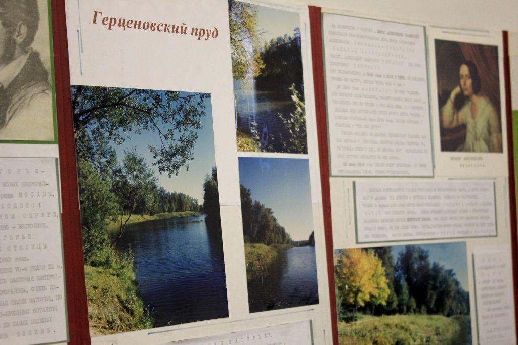 Герценовские пруды и парк названы в честь писателя Александра Ивановича. Фото: Мария Канина