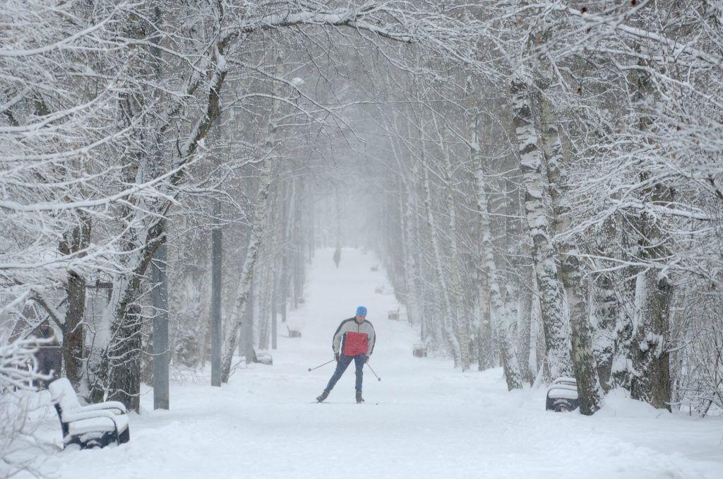 Почти 30 километров лыжных трасс подготовили для гостей «Царицына»