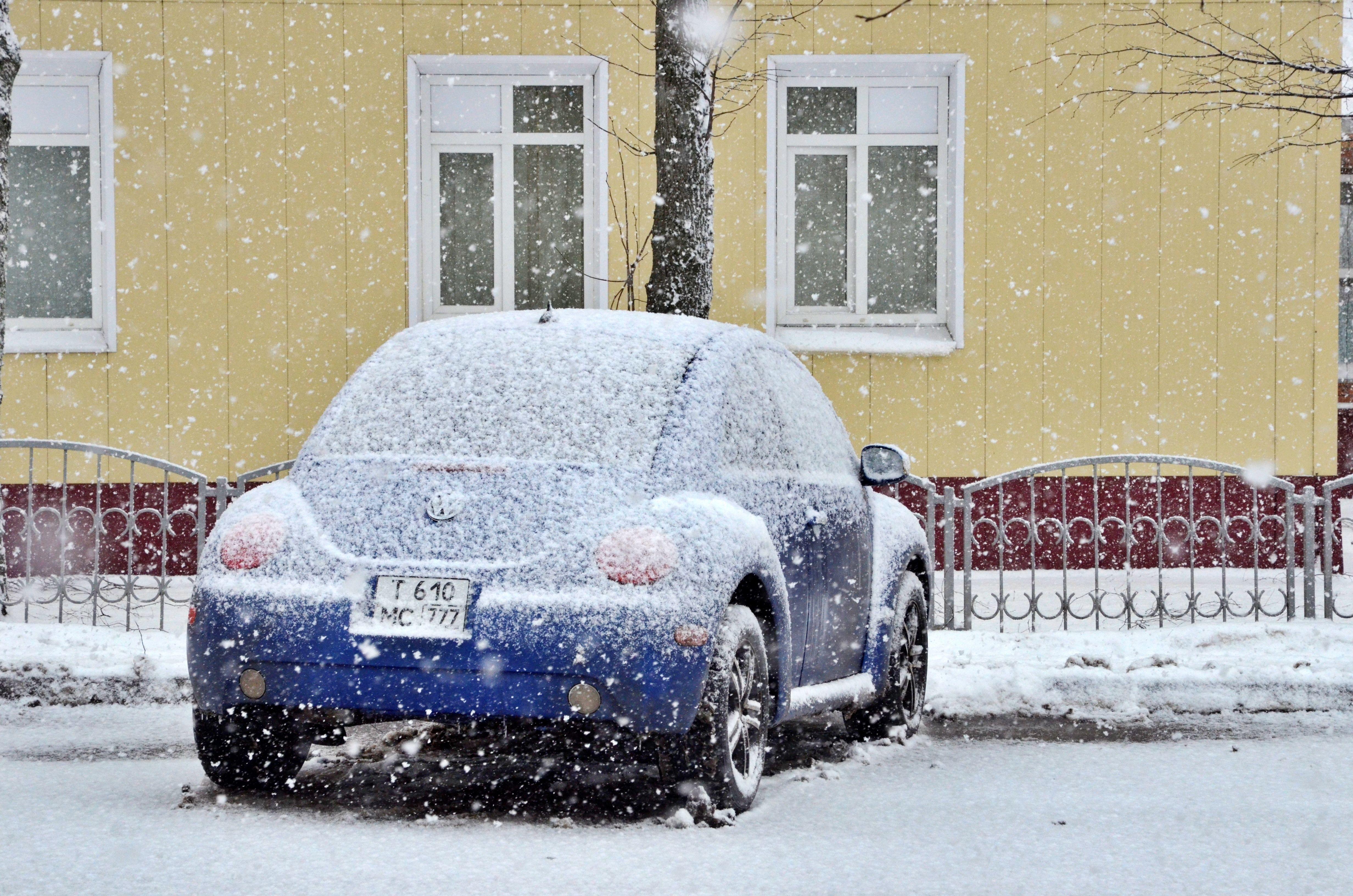Теплый апрель не обойдется без «дыхания зимы» в Москве