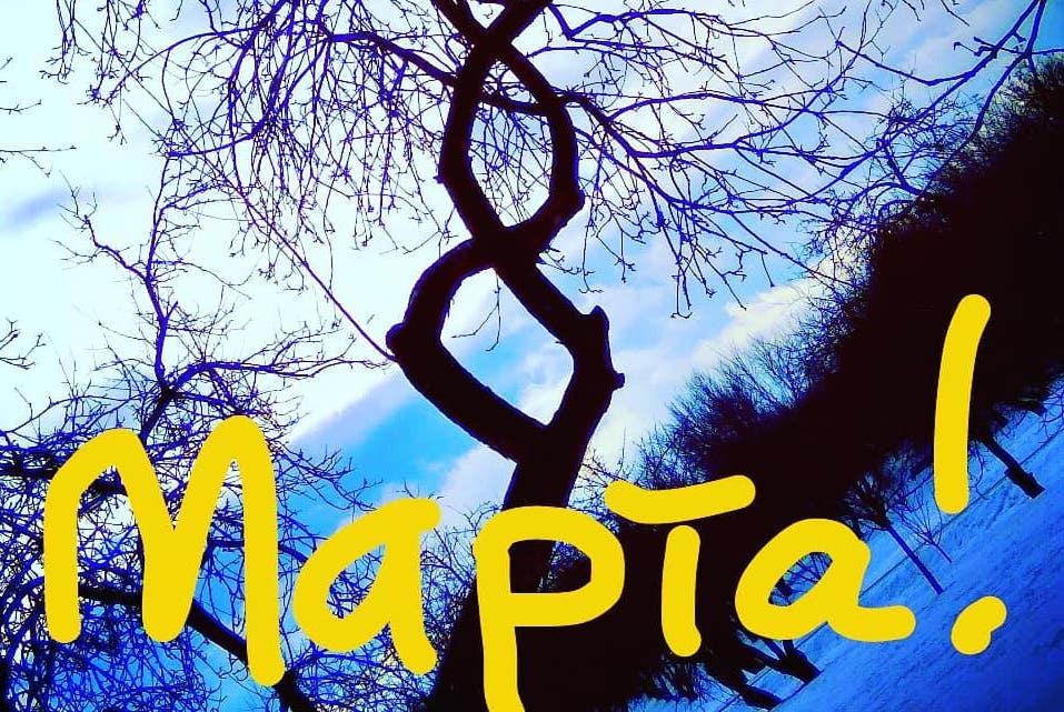 Поздравление от природы: народный корреспондент поделилась открыткой к 8 Марта