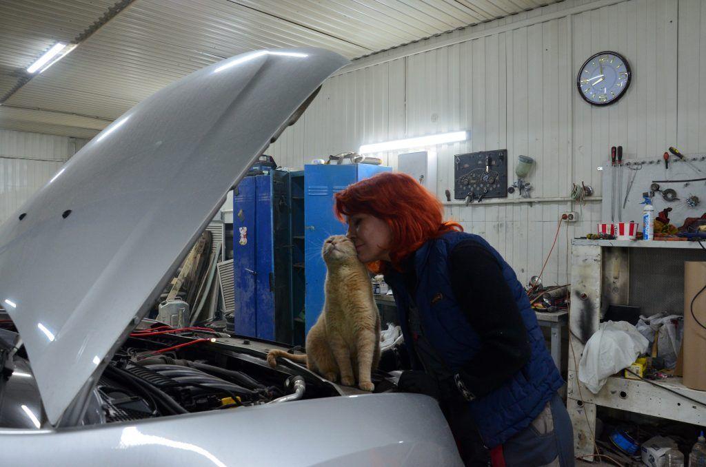 Кот Механик активно участвует в рабочем процессе. Фото: Патимат Абдурахманова