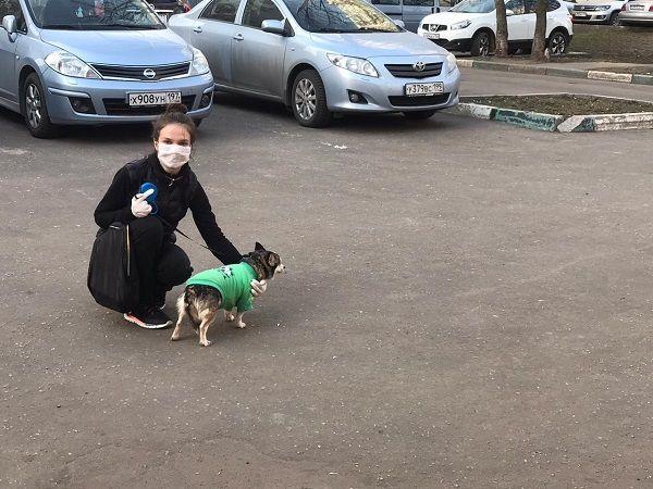 Наталья Коршунова: «Важно защитить себя от псевдоволонтеров»