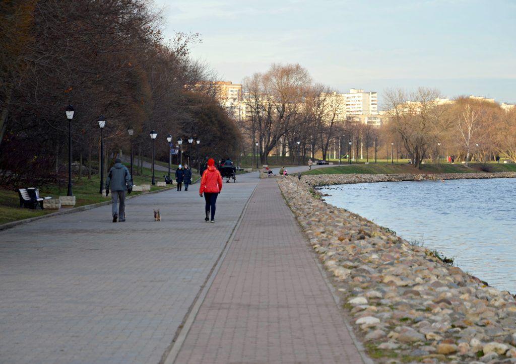 Фестивальную площадку откроют в «Коломенском» в 2020 году.Фото: Анна Быкова