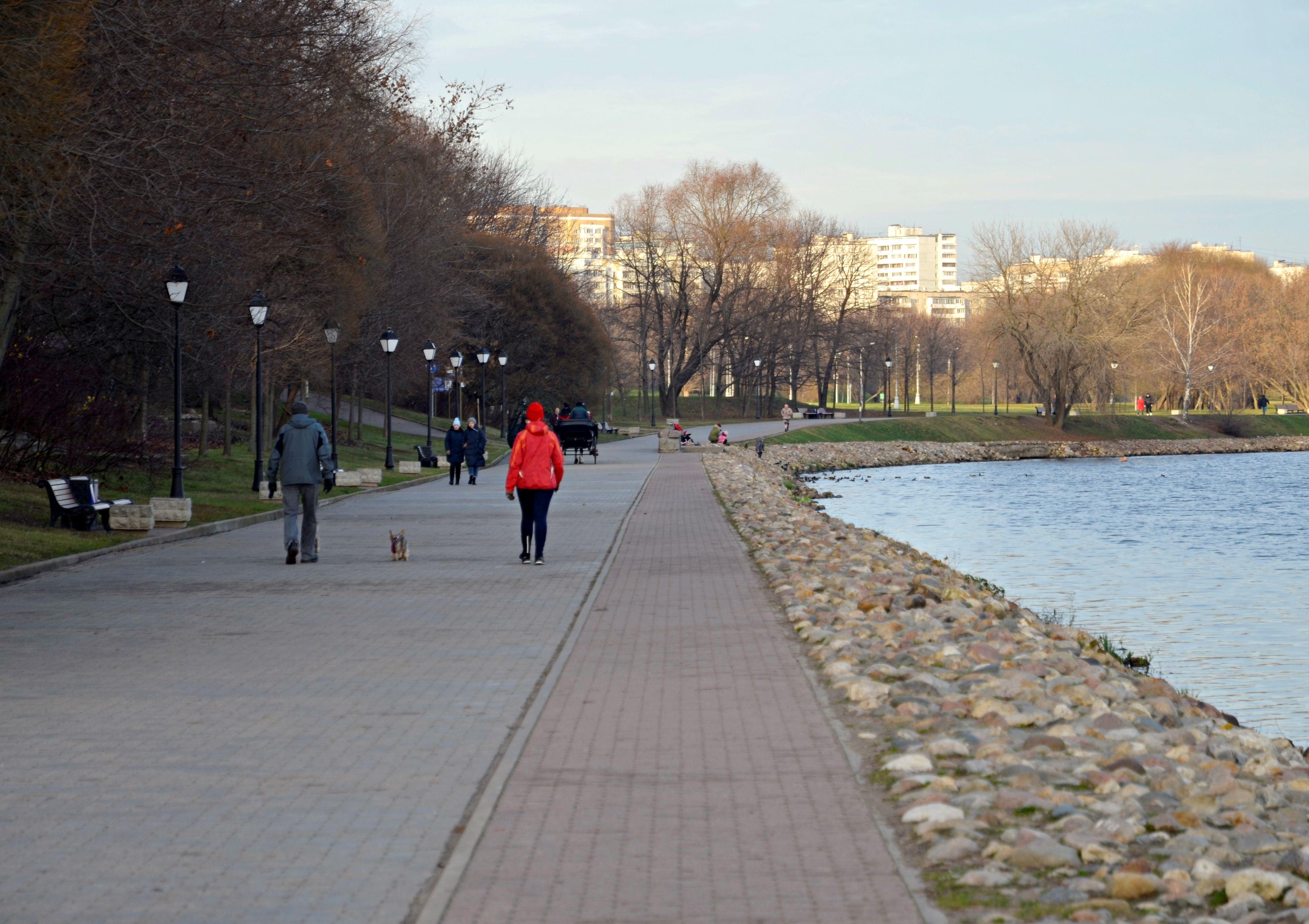 Фестивальную площадку откроют в «Коломенском» в 2020 году