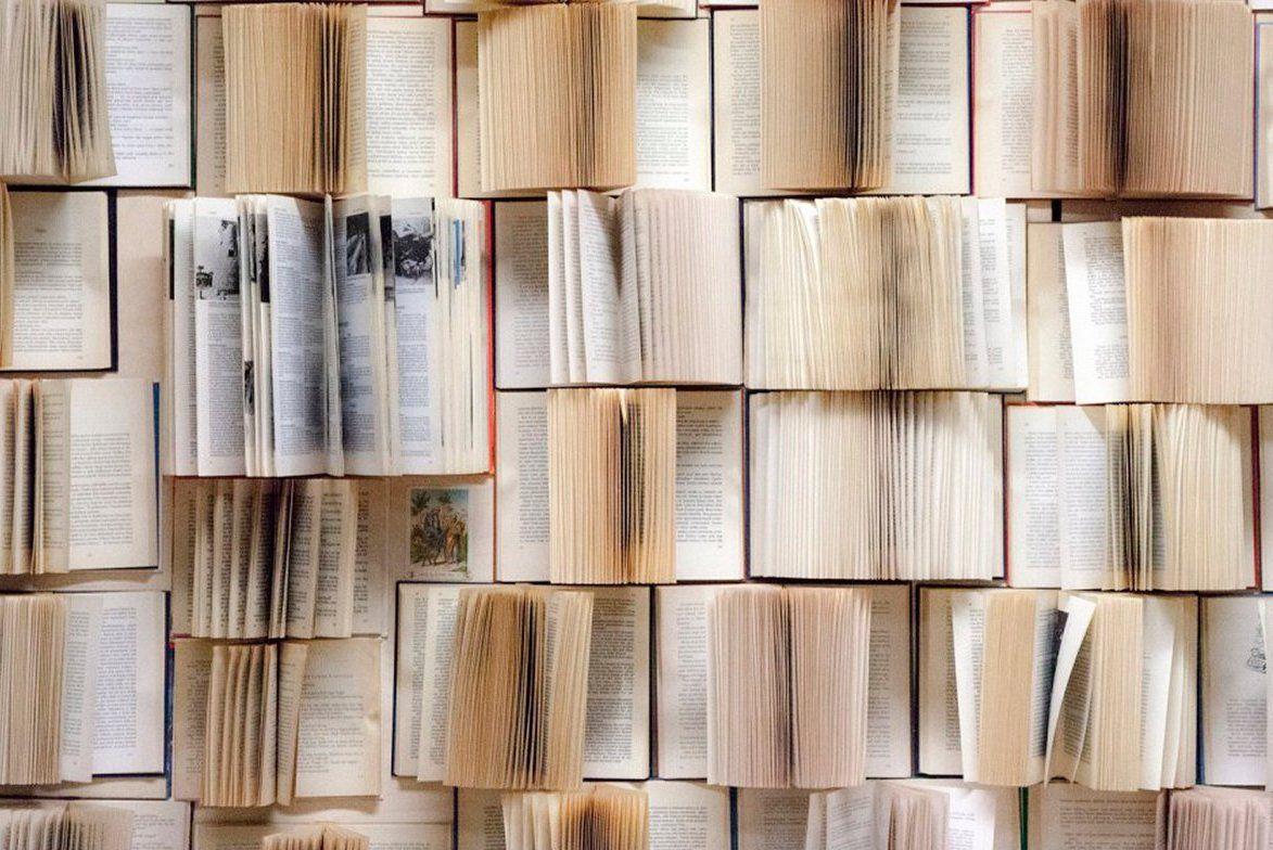 Советы начинающим писателям дали сотрудники библиотек юга