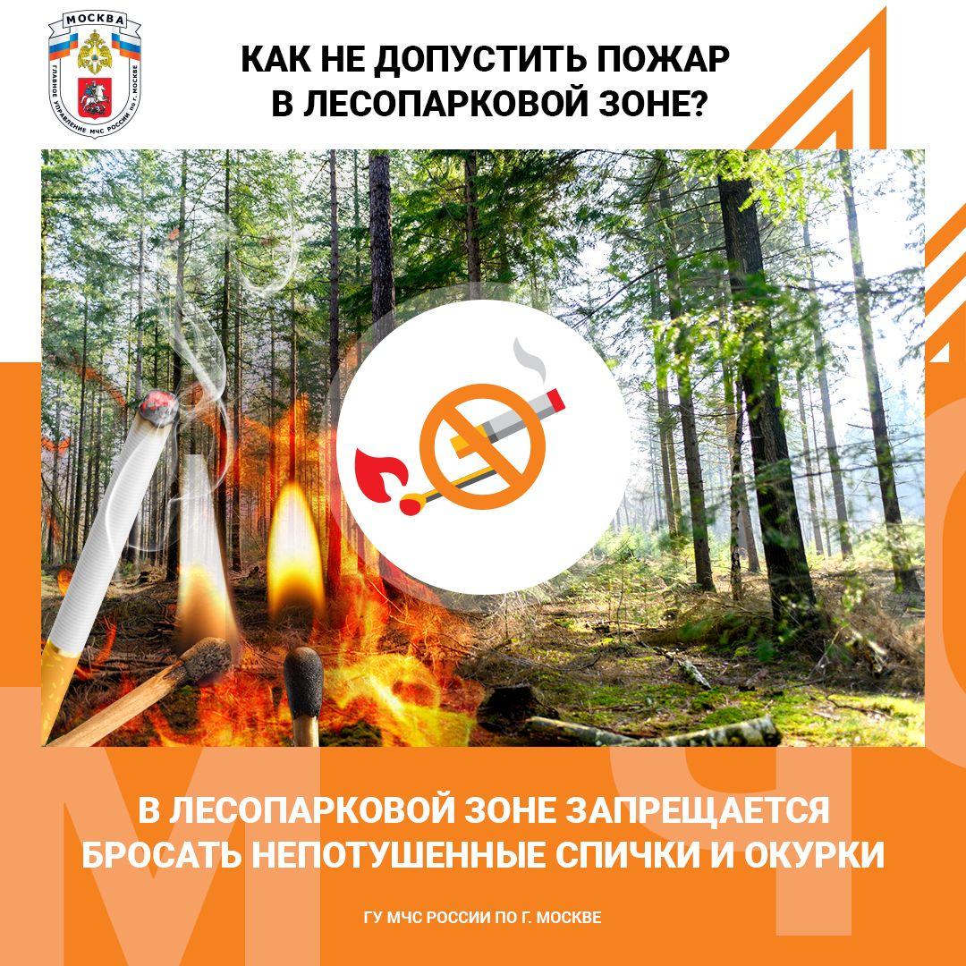 Пожарная безопасность в лесопарковых зонах