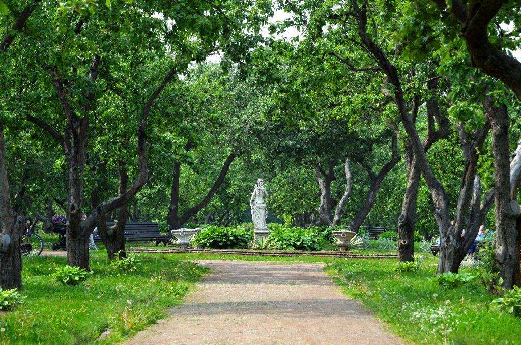 Зеленый рай: экскурс в историю «Коломенского» провели в музее-заповеднике. Фото: Анна Быкова