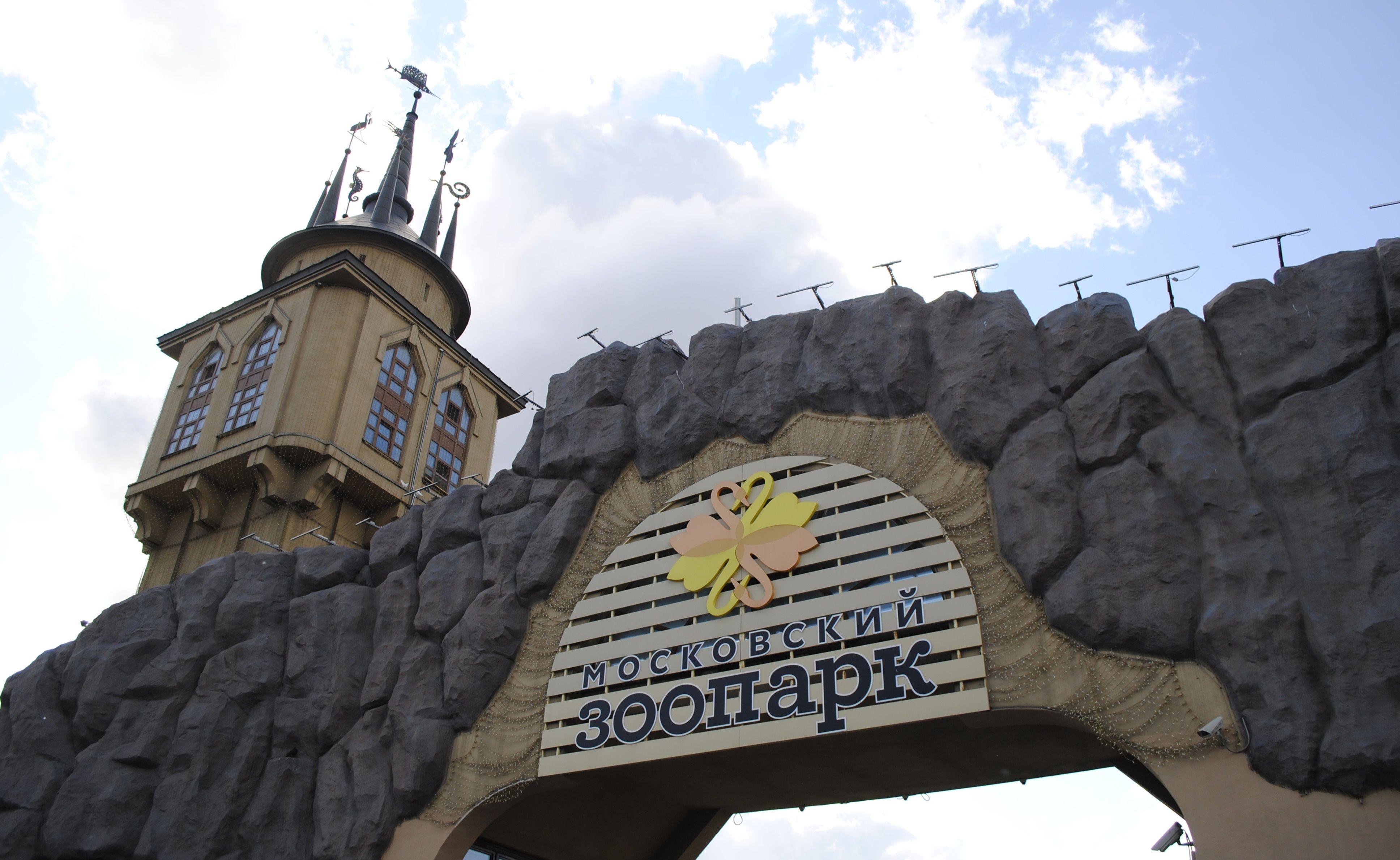 Московский зоопарк откроется для посетителей 16 июня