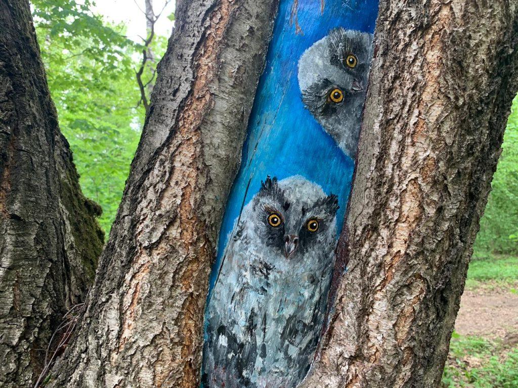 Деревья в Бирюлевском дендропарке спасут рисунки. Фото предоставили в пресс-службе Мосприроды