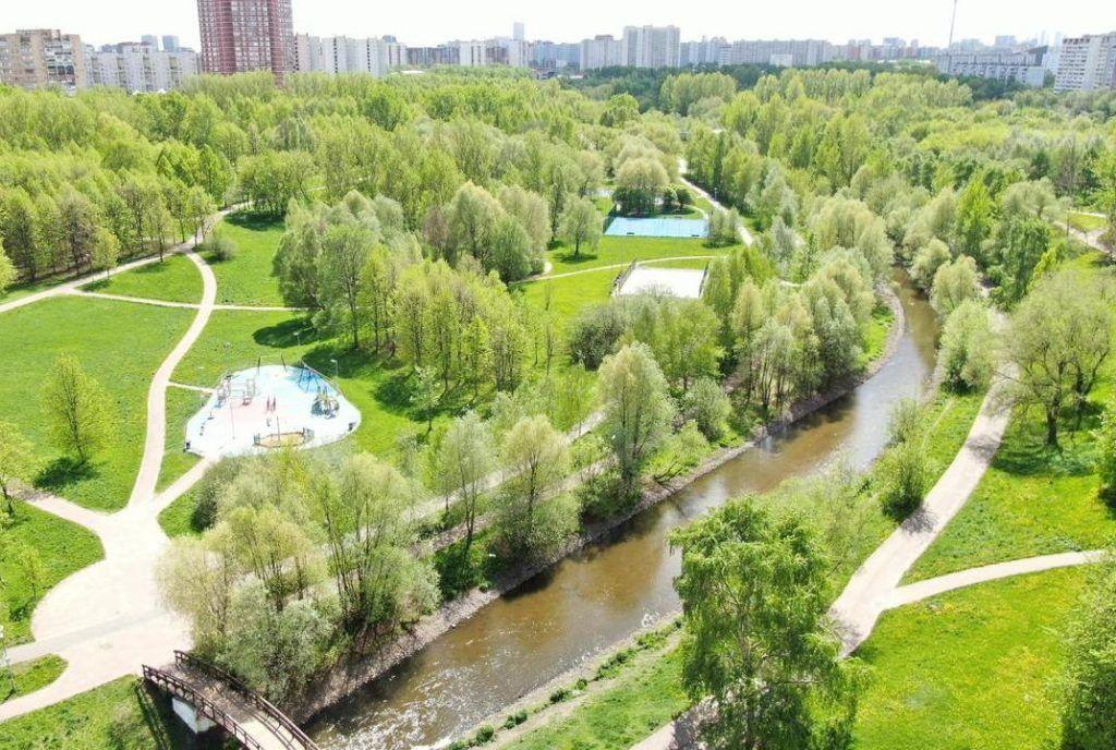 Озеленение городских территорий является одним из важнейших акцентов благоустройства